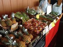 採れたてのやんばる野菜が売っているミニマルシェも常設しています。