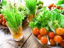 やんばるのフレッシュ野菜でヘルシーメニュー・・・