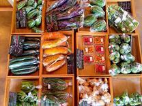 小さなマルシェで、採れたてお野菜どうぞ。